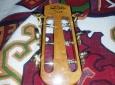 ivanovski-guitar-4