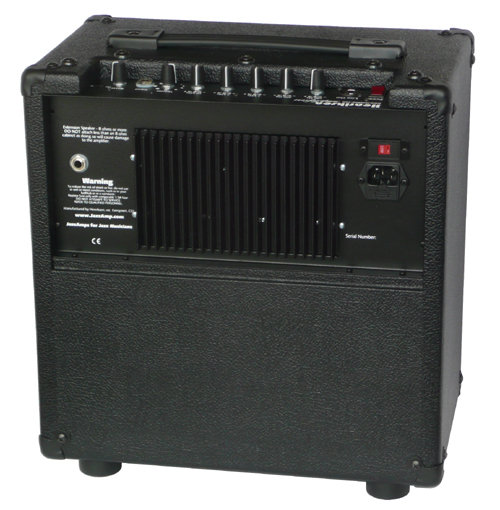 Henriksen BluesAmp 110