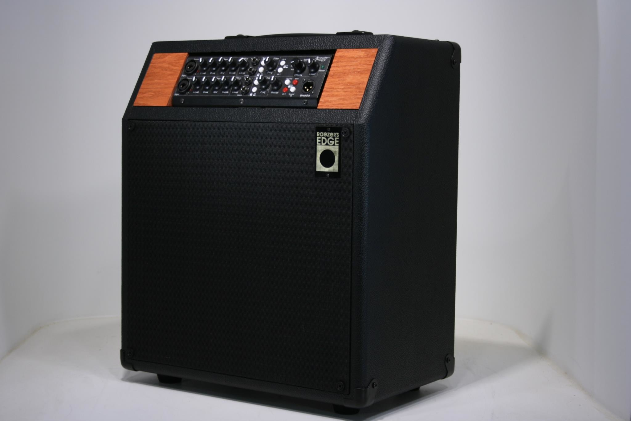 Raezer's Edge Stealth 10 Combo Speaker Cabinet (Includes Cover)