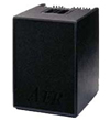 AER BASIC PERFORMER ACOUSTIC BASS AMPLIFIER and GIGBAG