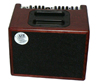AER COMPACT 60 ACOUSTIC AMPLIFIER and GIGBAG - SOLID WOOD MAHOGANY