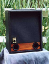 Raezer's Edge Bass 10 Speaker Cabinet (Includes Cover)