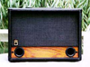 Raezer's Edge Twin 8 Light Weight Speaker Cabinet (Includes Cover)